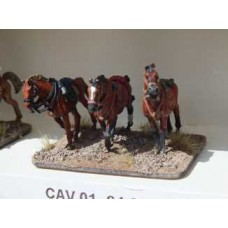 horse pack standing (3)